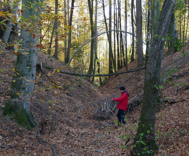 Geländeeinschnitt zwischen dem Areal des Basaltsteinbruchs und dem Hügelgräberfeld gegen Südosten, ehemalige Weitendorferstraße. (© KPH/G. Lassacher)