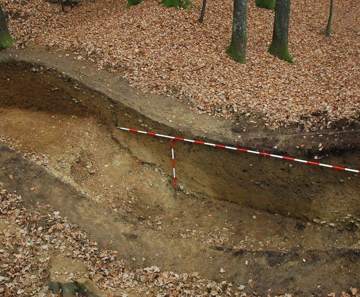 Profil der Wall-Graben-Anlage gegen Süden, Grabung 2005. (© KPH/Ch. Gutjahr)
